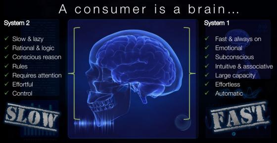 A consumer brain