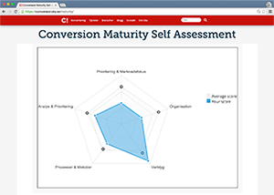 Conversion Maturity Self Assessment