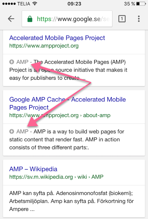 AMP serp Google