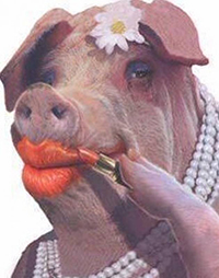 Don't put lipstick on a pig