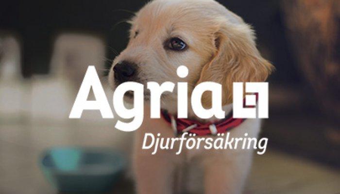 Agria djurförsäkring - 10% ökad konverteringsgrad